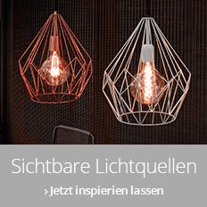Leuchten mit sichtbarer Lichtquelle