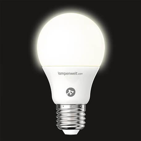 LED-Lampe matt