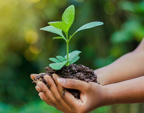 Engagement für Umwelt & Gesellschaft
